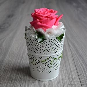 Romantická dekorácia do domu so stabilizovanou ružou