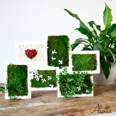Machový multirámik so stabilizovanými kvety a srdiečkom ♥