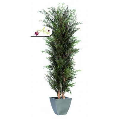 Stabilizovaná rastlina Lungifolia 130 cm