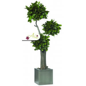 Stabilizovaná rastlina Salal Bonsai 160 cm